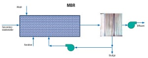 Figure 1.  A typical external side-stream membrane bioreactor (MBR) is depicted here