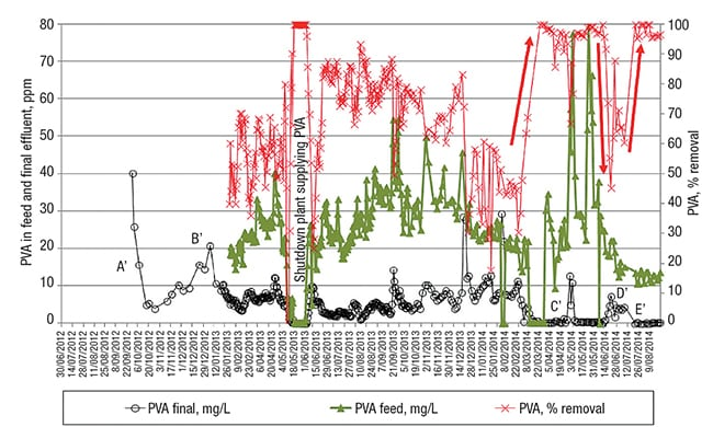 FIGURE 5.  Poly-vinyl alcohol (PVA), concentration in the feed and final effluent, together with its removal efficiency. The red arrows show variations in the PVA removal induced by the PO4-P changes depicted with light blue arrow in Figure 4