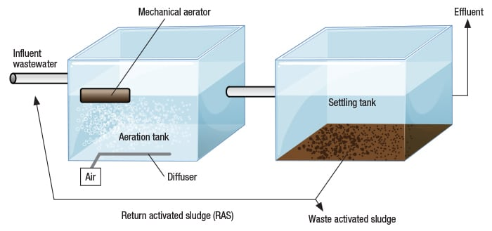 Figure 1. The diagram shows the basic processes found in activated sludge process (ASP) operations