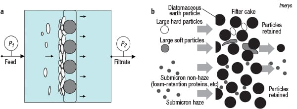 Figure 1. In cake filtration (a), the separation takes place on a buildup of particles (cake) on the filter medium. In some cases (b), more than simple size exclusion may be involved