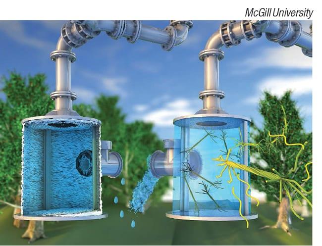 nano-engineered cellulose